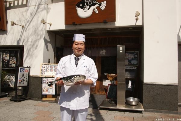 Kugelfisch Fugu Japan